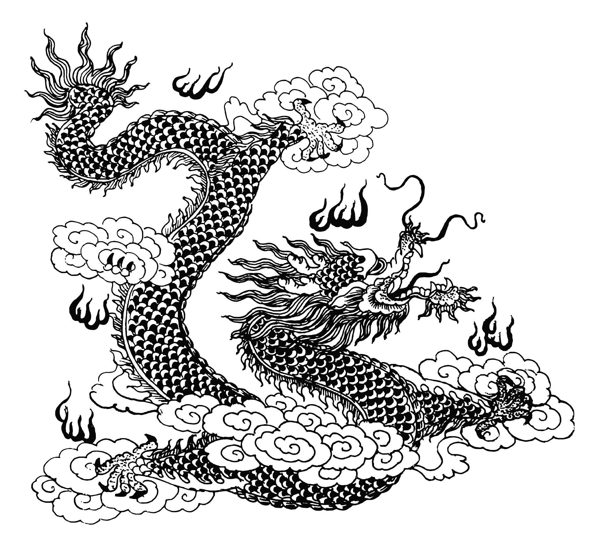 Dragon art design droide. Asian clipart line
