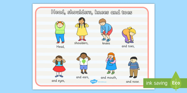 Assessment clipart head to toe. Shoulders knees and toes