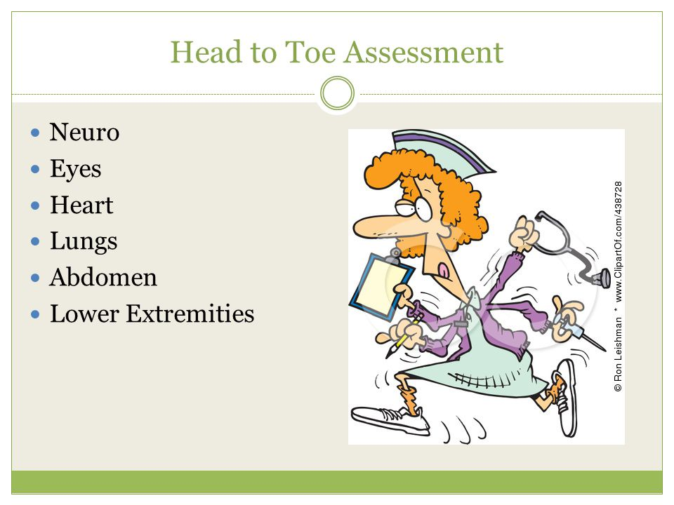Physical ppt video online. Assessment clipart head to toe