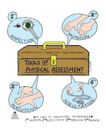 Assessment clipart nursing assessment. Physical memorization tricks nursessity