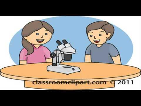 Assessment clipart performance assessment. Based youtube