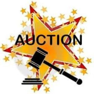 Auction school