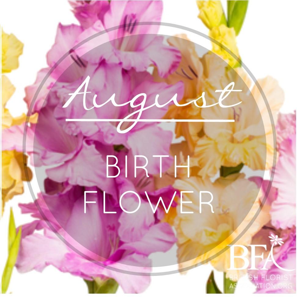 Birth . August clipart august flower