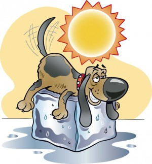 Days of august clip. Dog clipart summer