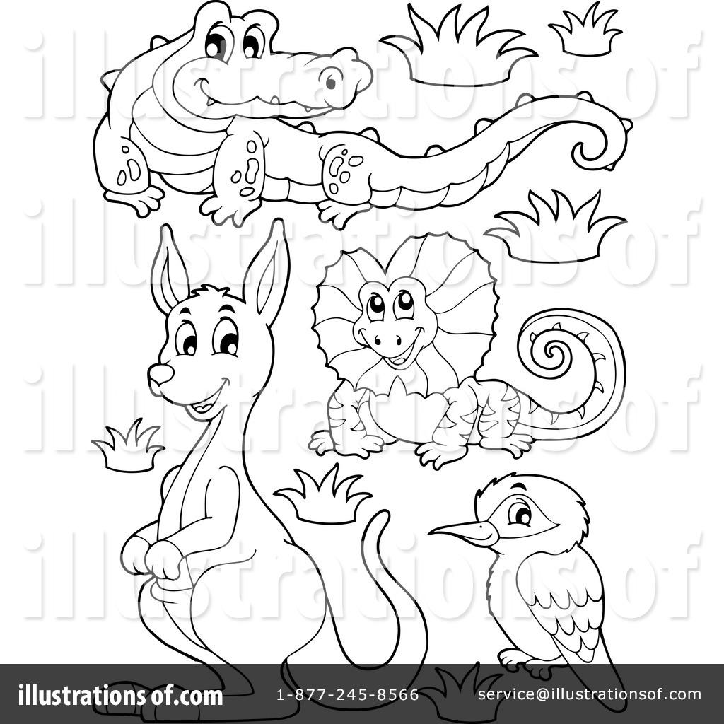 Australian animals at getdrawings. Australia clipart drawing