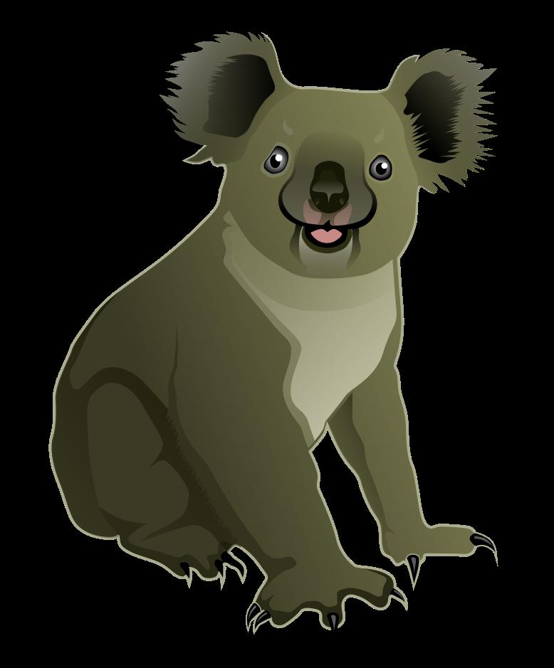 Png images free download. Australia clipart koala