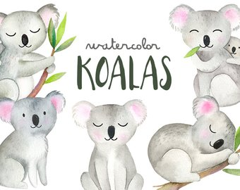 Australia clipart koala. Art etsy watercolor koalas