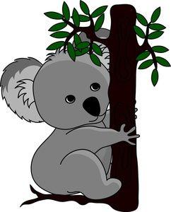 Koala clipart koala australian. Free australia koalafans koalalovers
