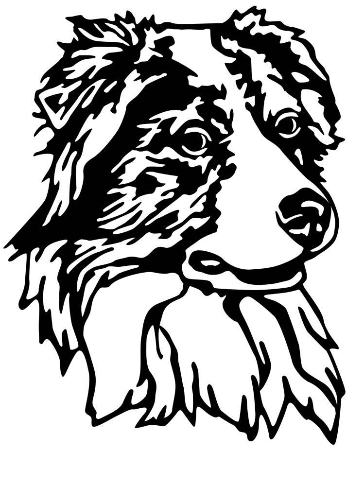 Australia clipart stencil. Australian shepherd drawing at