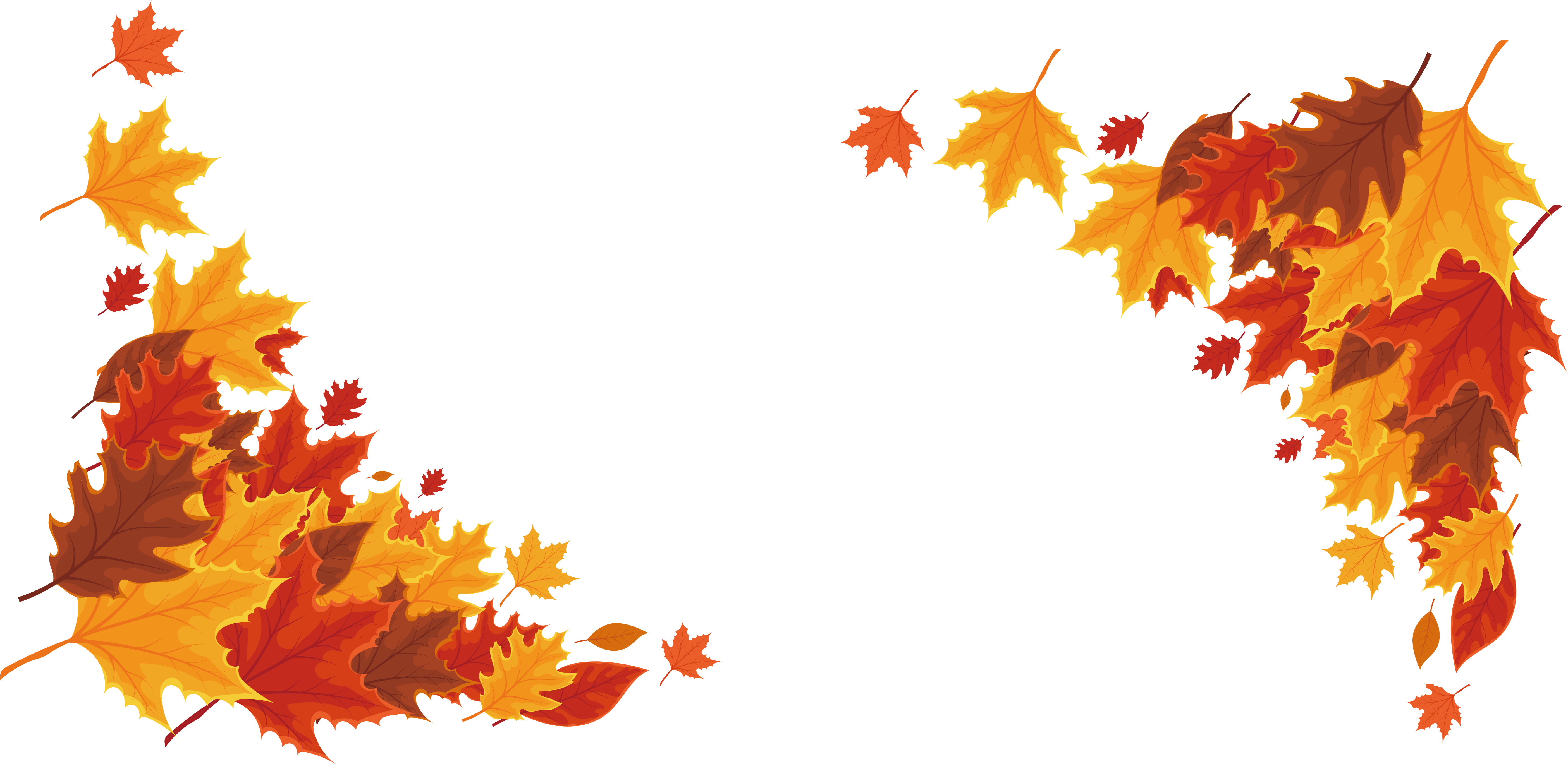 Red maple leaf transprent. Autumn border png