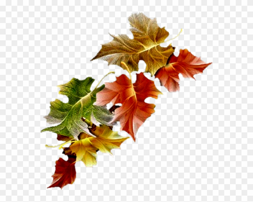Automne free leaves gifs. Autumn clipart animated