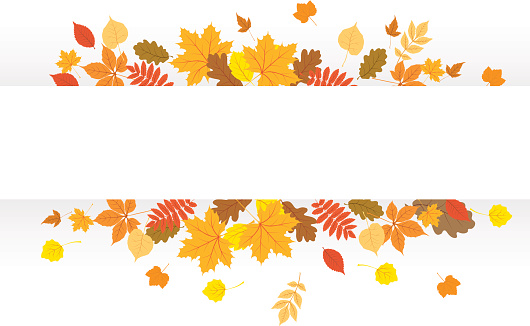 Free fall cliparts download. Autumn clipart banner