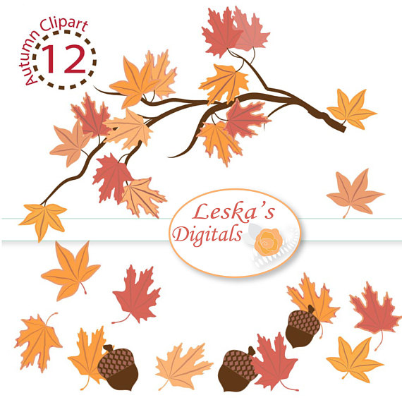 Autumn clipart branch. Leaf acorn digital leaves