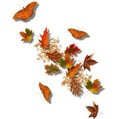 Page borders landscape border. Autumn clipart butterfly