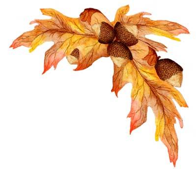 Cluster cliparts oak leaf. Autumn clipart corner