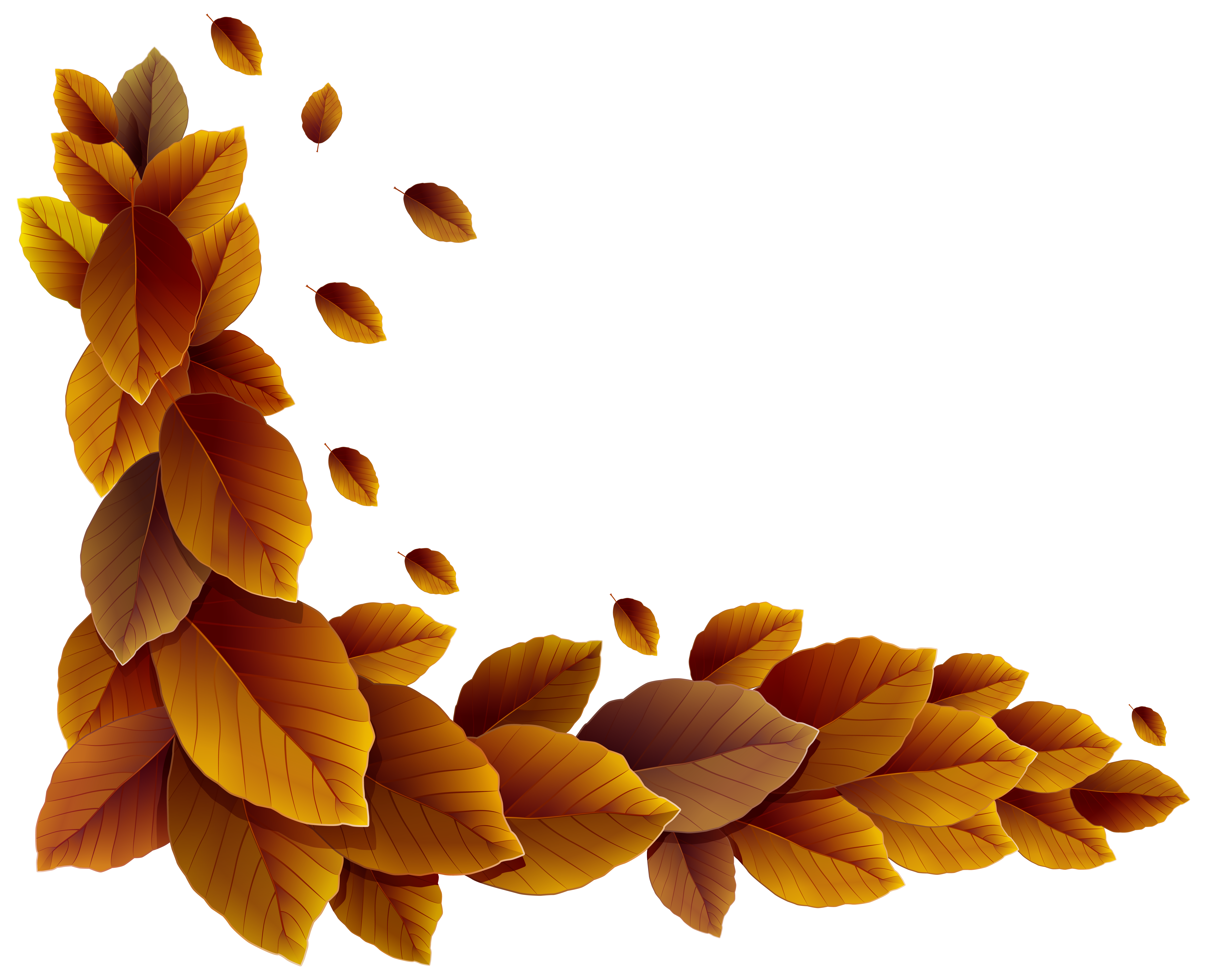Autumn clipart corner. Fall leaves decor png