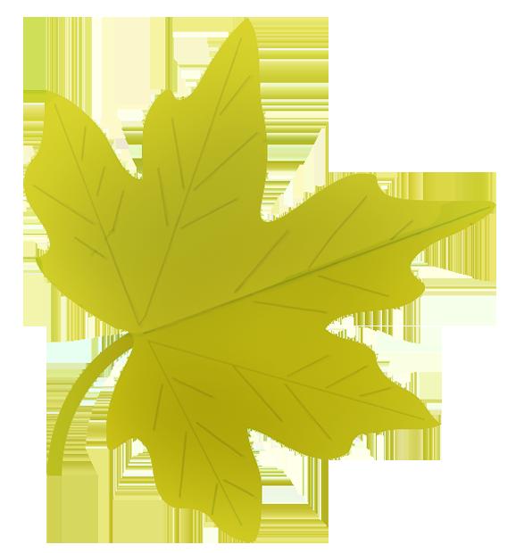 Autumn clipart elegant. Fall leaves clip art