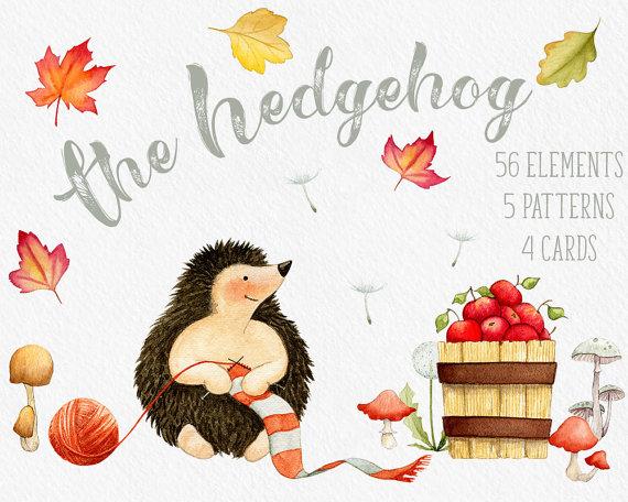 Fall hedgehog leaves mushroom. Autumn clipart element