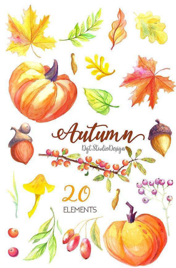 Watercolor fall pumpkin maple. Autumn clipart element