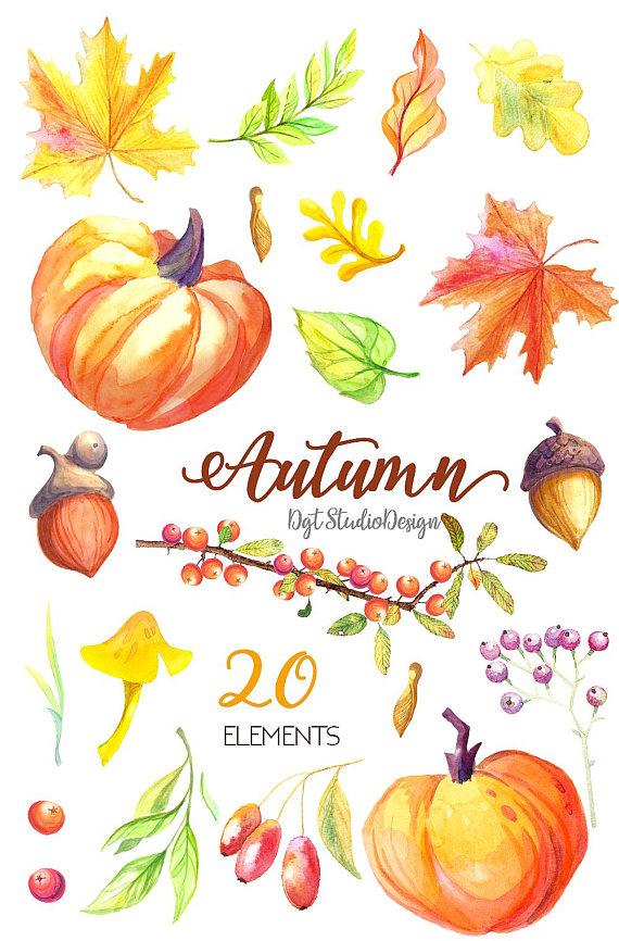 Autumn clipart element. Watercolor fall pumpkin maple