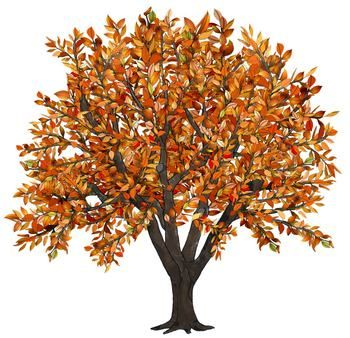 Autumn clipart family. Clip art seasons of