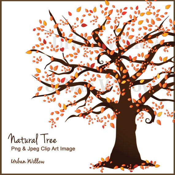 Fall tree trees vectors. Autumn clipart family