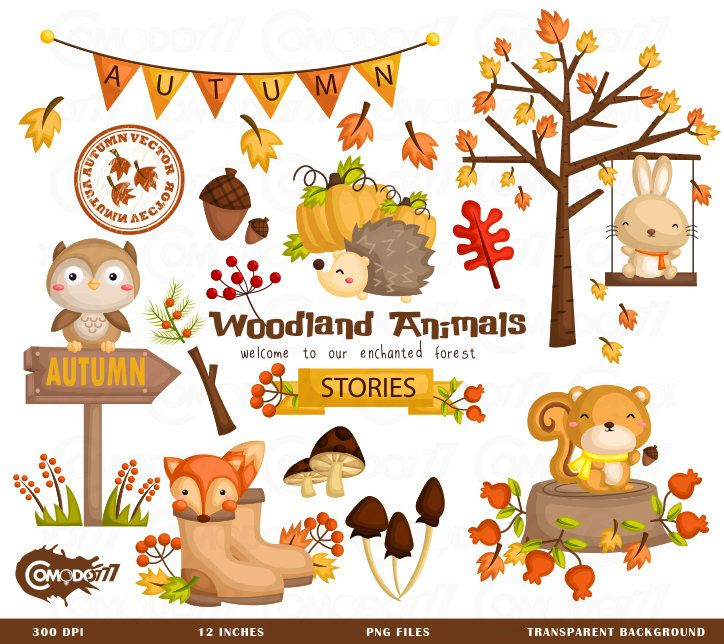 Fall clipart autumn animal. Commercial use vector graphic