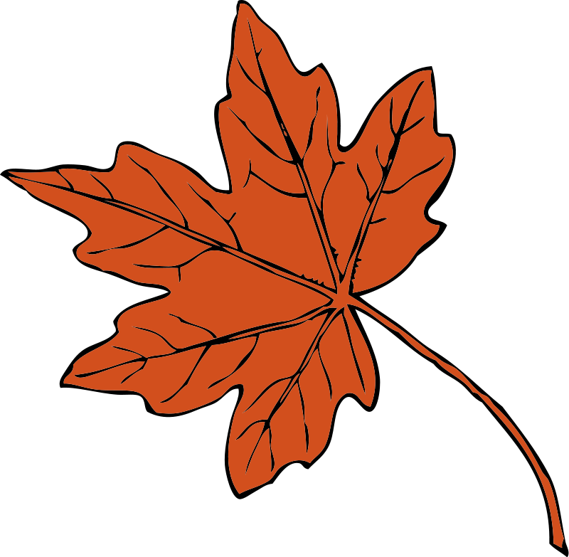 Clipart thanksgiving bear. Green maple leaf panda