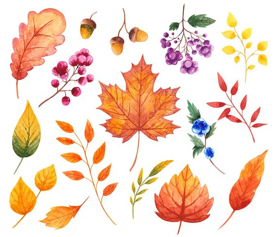 Autumn clipart scrapbook. Fall watercolor leaves