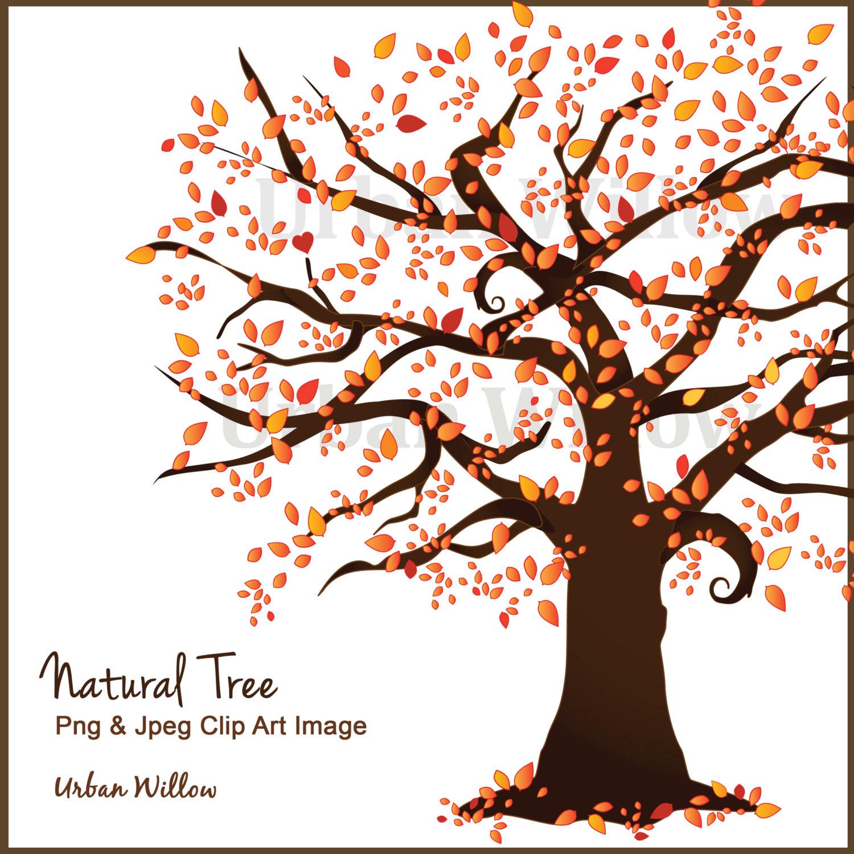 Beautiful tree trees vector. Autumn clipart scrapbook