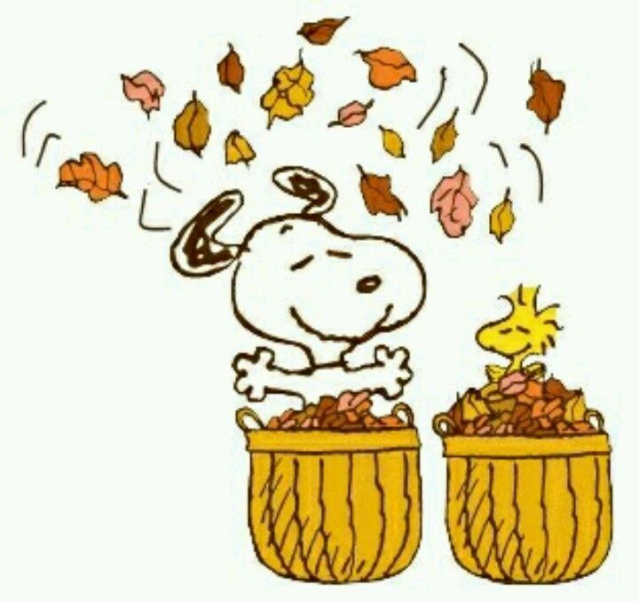 best autunno images. Autumn clipart snoopy