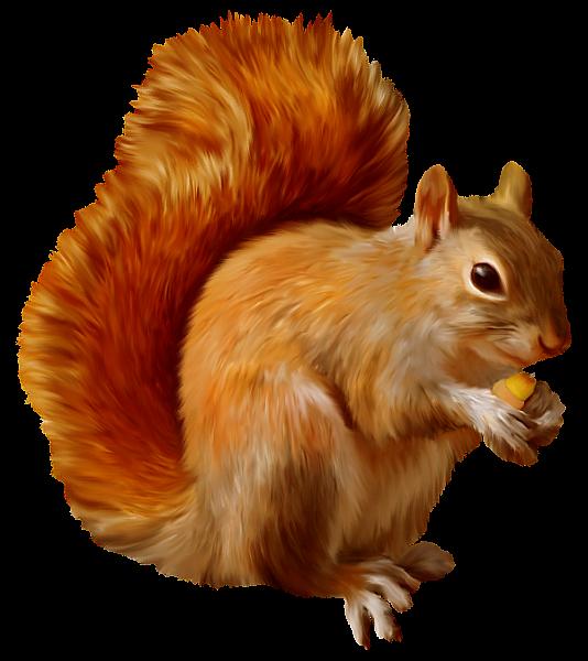 The hardest english words. Autumn clipart squirrel