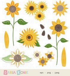 Autumn clipart sunflower. Fall