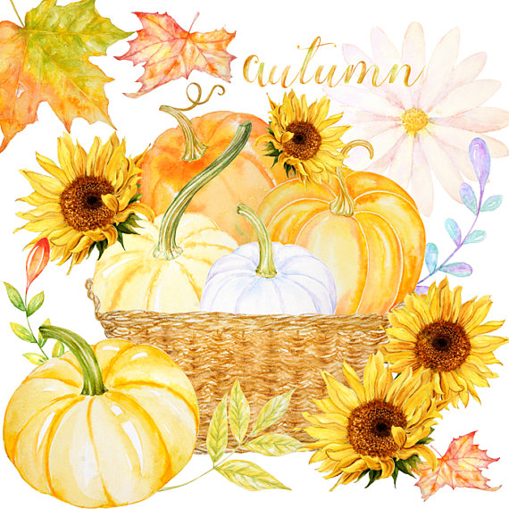 Autumn clipart sunflower. Fall watercolor harvest blessings