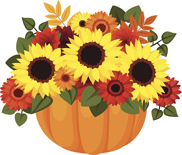 Pencil and in color. Autumn clipart sunflower