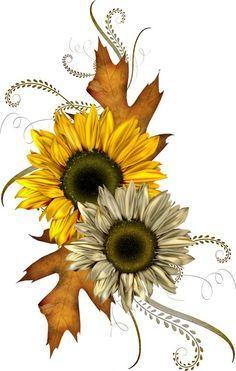 jpg pinterest equinox. Autumn clipart sunflower