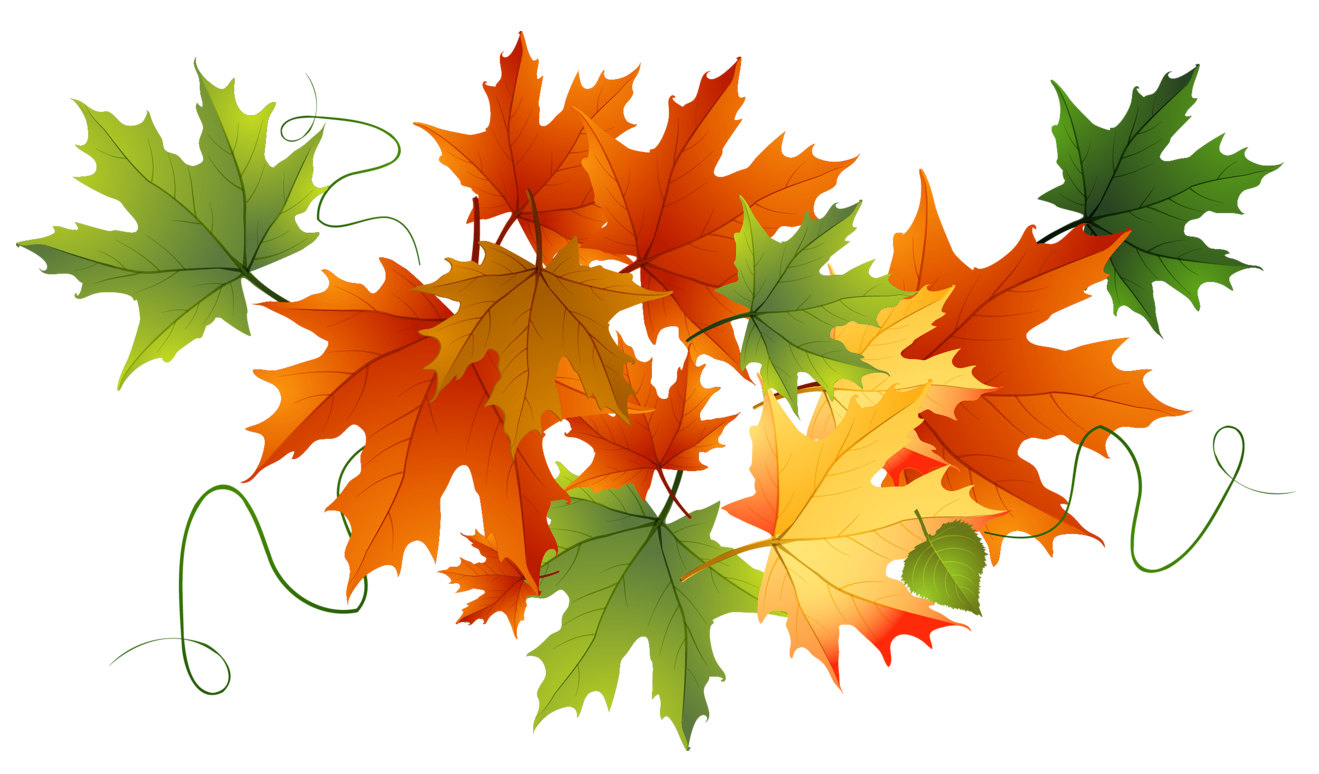 Autumn transparent leaves gallery. Fall clipart october