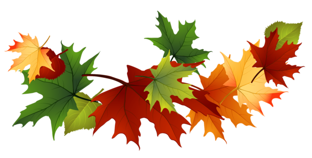 Autumn clipart transparent background.  collection of leaves