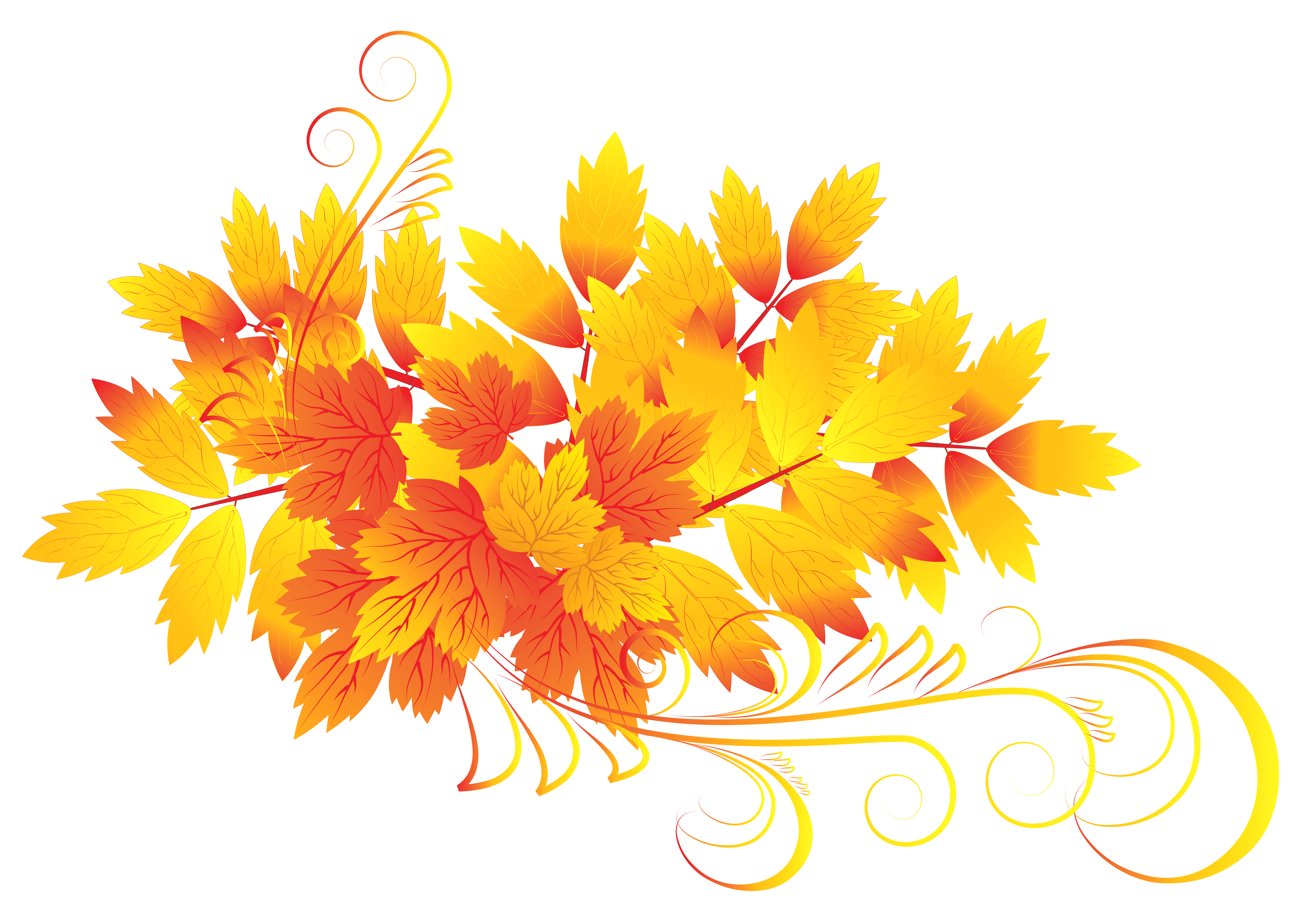 Clipart fall flower. Autumn leaves png gallery