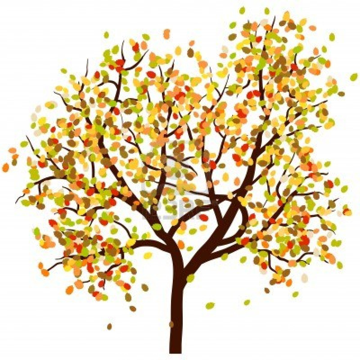 With falling leaves . Autumn clipart tree