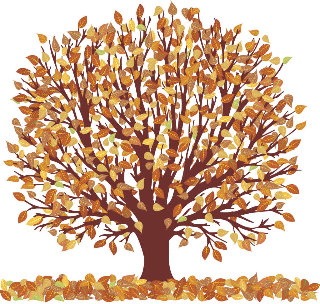 Trees fall . Autumn clipart tree