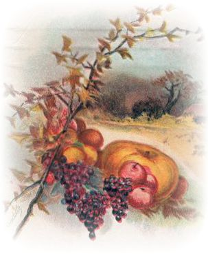Autumn clipart victorian. Free clip art from
