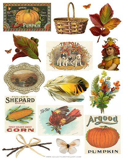 Autumn clipart vintage. Free clip art collage