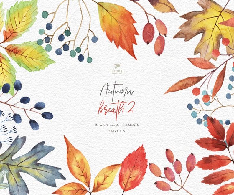 Fall berries leaves digital. Autumn clipart watercolor