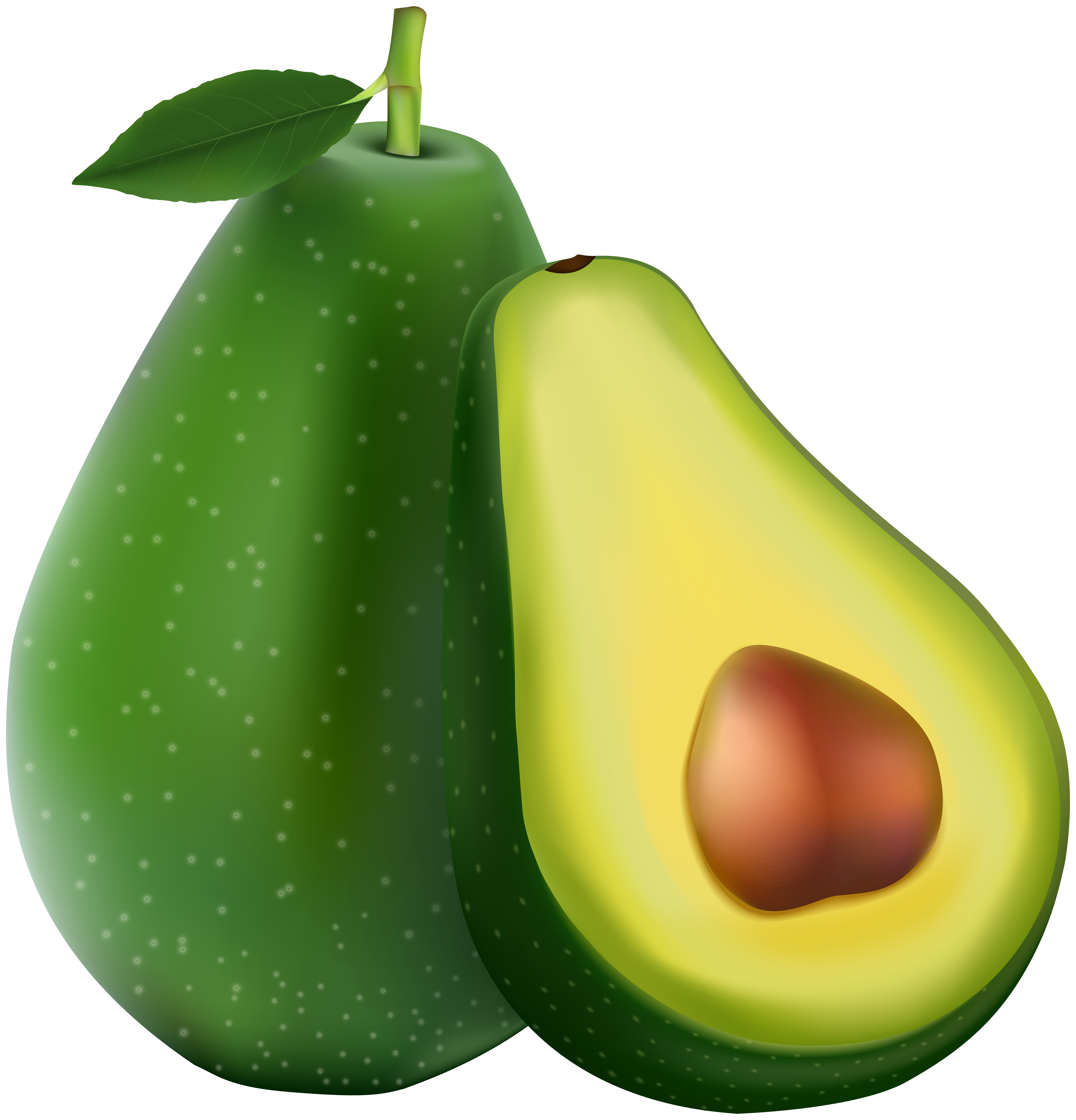 Avocado clipart. Transparent png image gallery