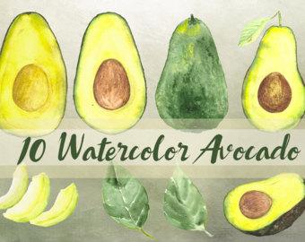 Avocado clipart abocado. Watercolor etsy clip art