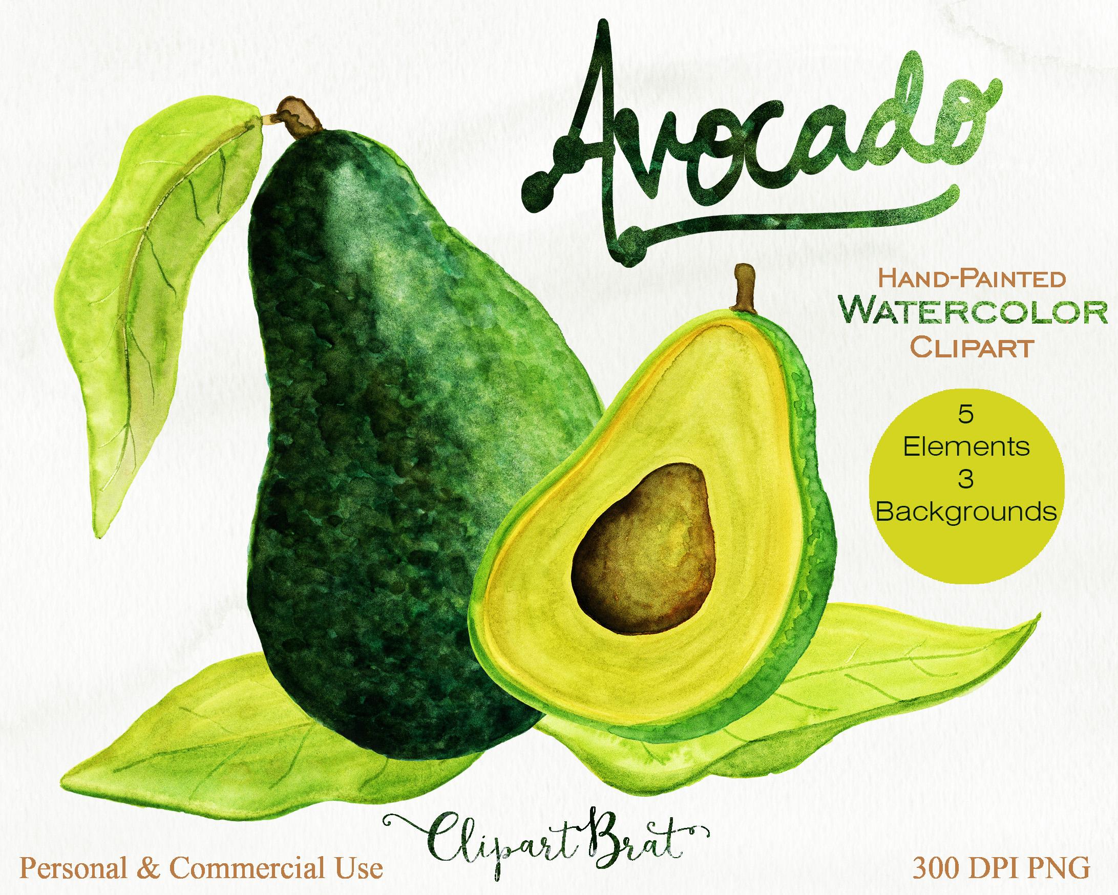 Avocado clipart advocado. Watercolor avacado vegetable fruit