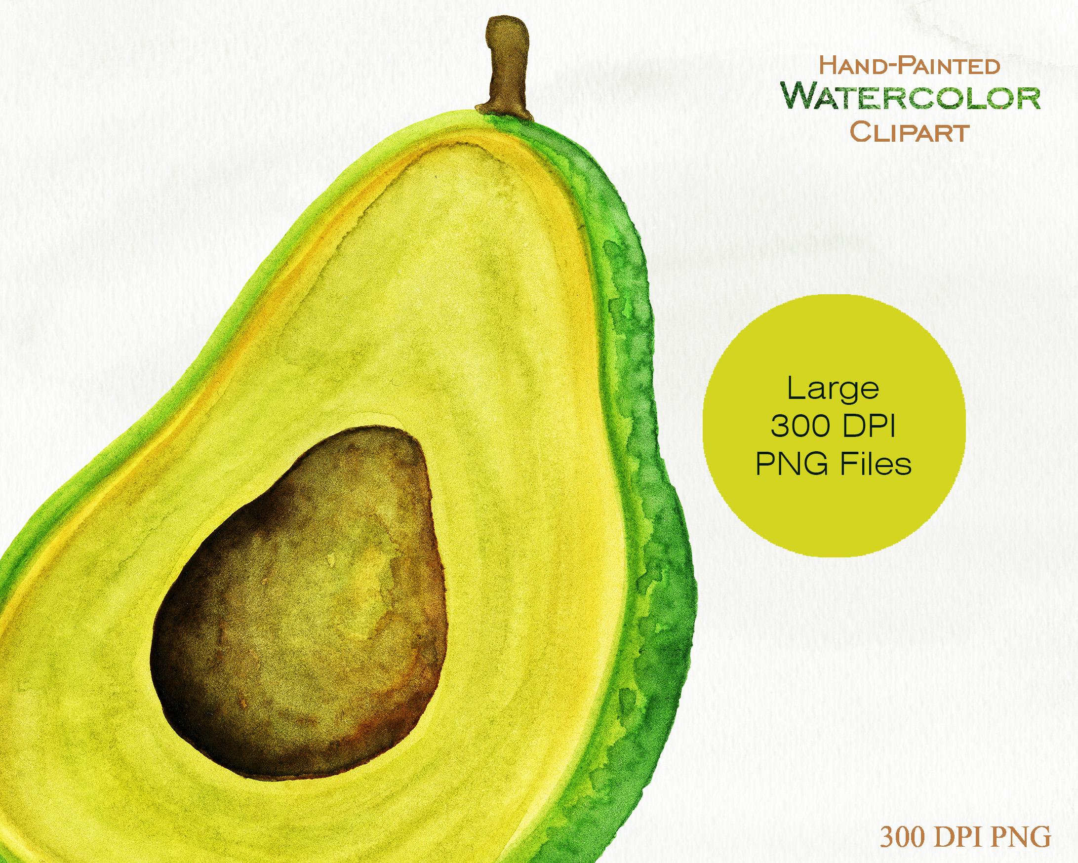 Avocado clipart advocado. Watercolor avacado vege design
