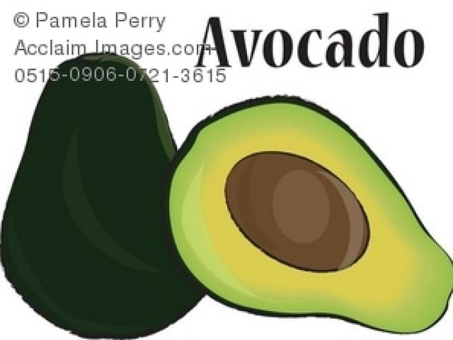 Free on dumielauxepices net. Avocado clipart advocado
