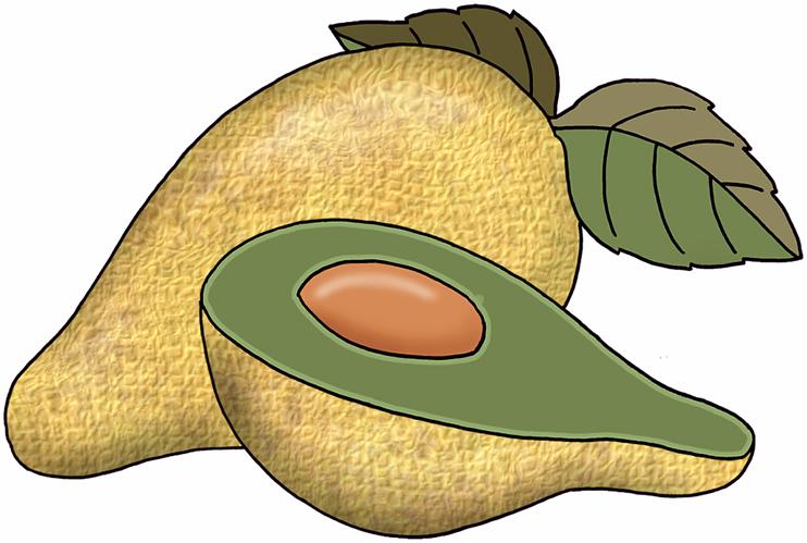 Avocado clipart atis. Panda free images avocadoclipart
